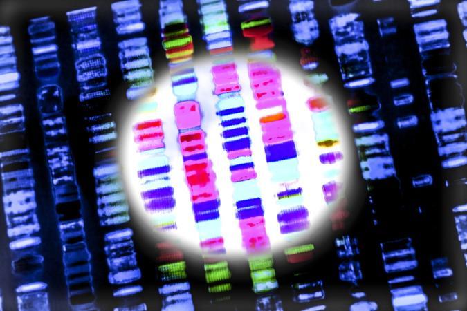 Scientists held a secret meeting to debate creating synthetic human genes