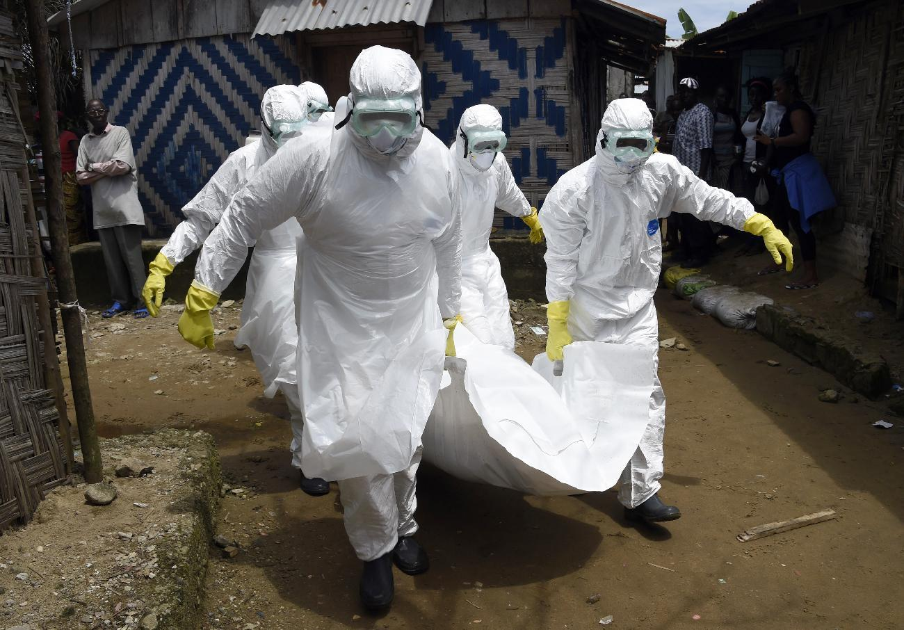 Red Cross workers carry away the body of a person suspected of dying from the Ebola virus, in the Liberian capital Monrovia, on October 4, 2014 (AFP Photo/Pascal Guyot)