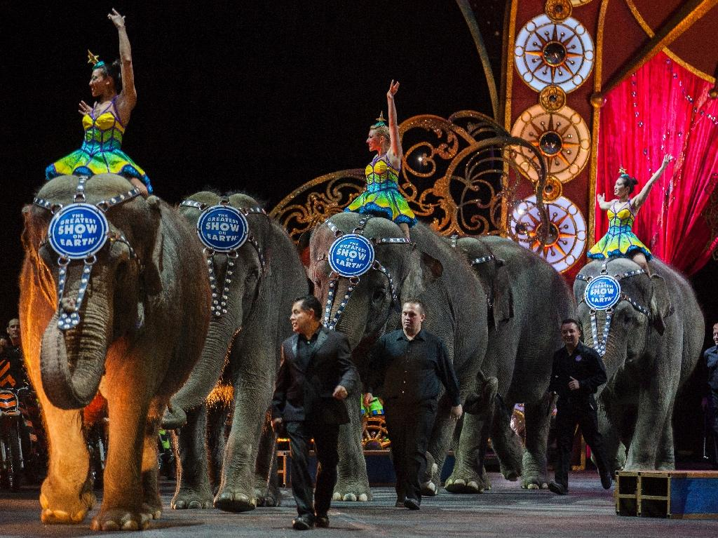 Ringling Brothers announced earlier this month it was relocating all its elephants by May to the conservation center