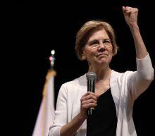 Elizabeth Warren's DNA claim inflames some Native Americans