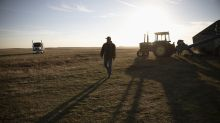 Will extreme weather's impact on harvest supply increase prices for farmers?