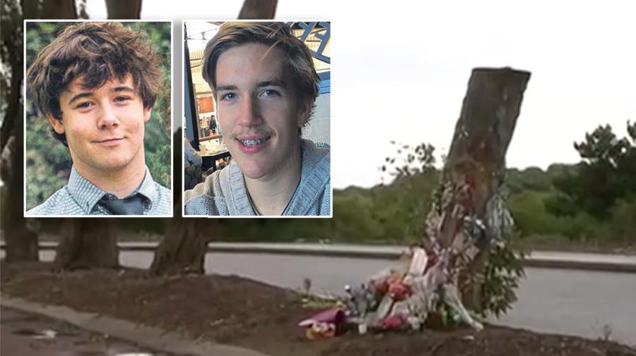 Devastation after council chops down tree memorial for two teens