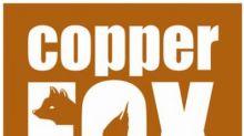 Copper Fox Announces Executive Change
