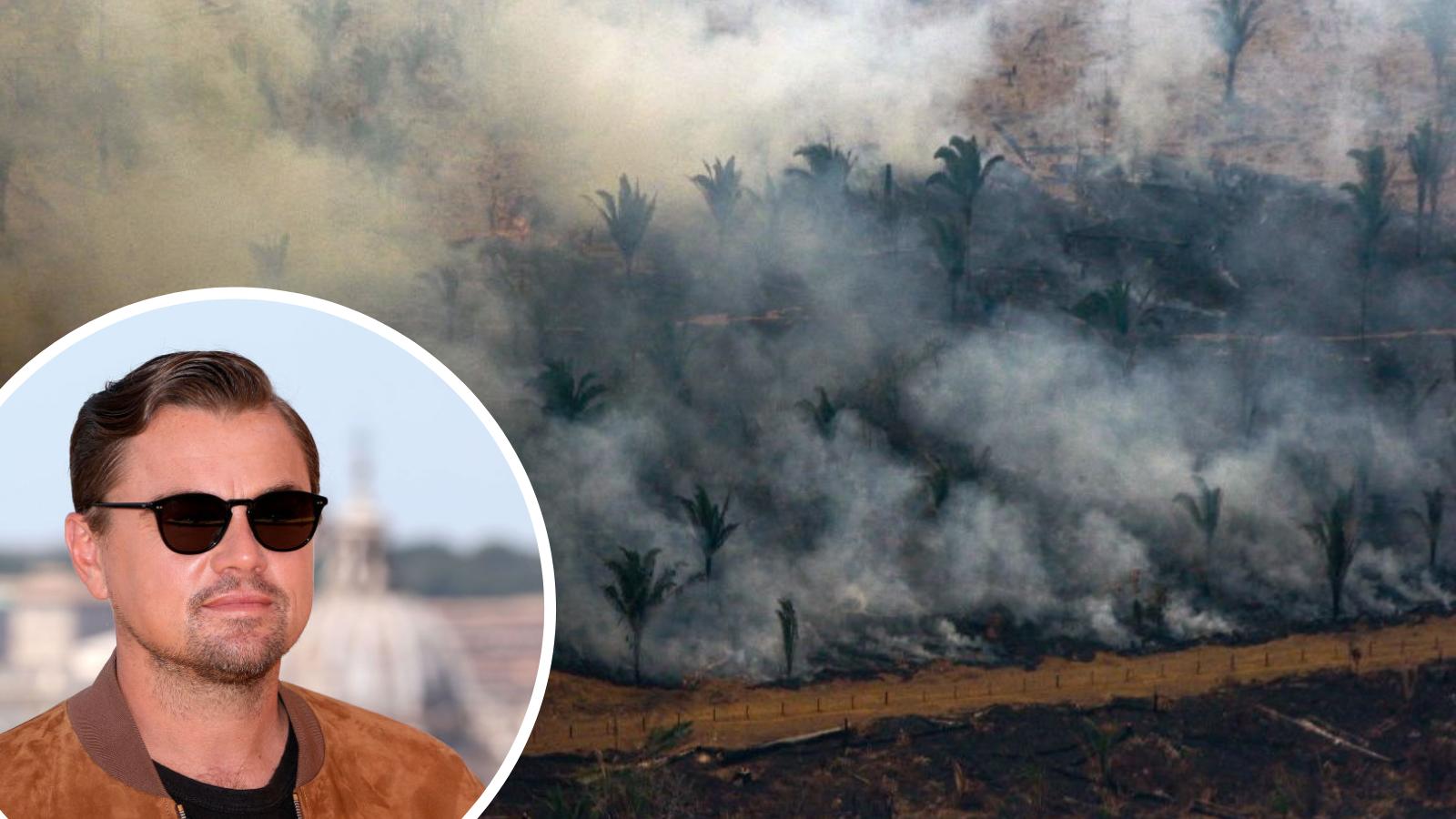 Leonardo DiCaprio's climate change fund pledges $7.4 million to save the Amazon