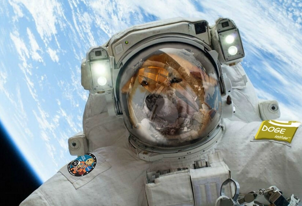 How Dogecoin Became So Popular