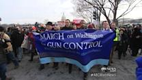 Newtown Families March on Nation's Capital