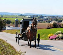 2 Amish men were pulled over for drinking while operating a horse and buggy