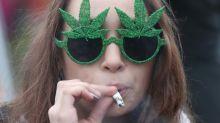 Canadá: el 25% de los ingresos fiscales por el cannabis irán al Estado
