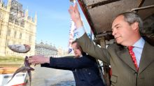Brexiteers dump fish in Thames to protest at EU deal