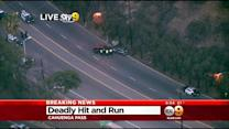 LAPD Investigating Deadly Hit-And-Run In Cahuenga Pass