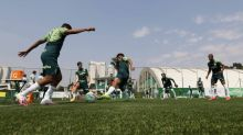 Palmeiras finaliza preparação para enfrentar Sport sem Luiz Adriano