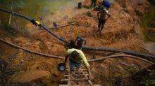 Brasil foi terceiro país com maior registro de mortes de ativistas ambientais em 2019, aponta Ong