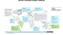 Investor Update: Aurora on International Markets and Capacity