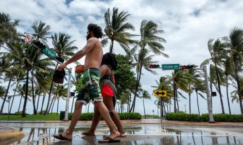 Miami Beach to cut back on famous palm trees over climate concerns