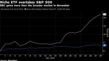 The Best-Performing ETF Has a Winning Strategy, But Just $29 Million