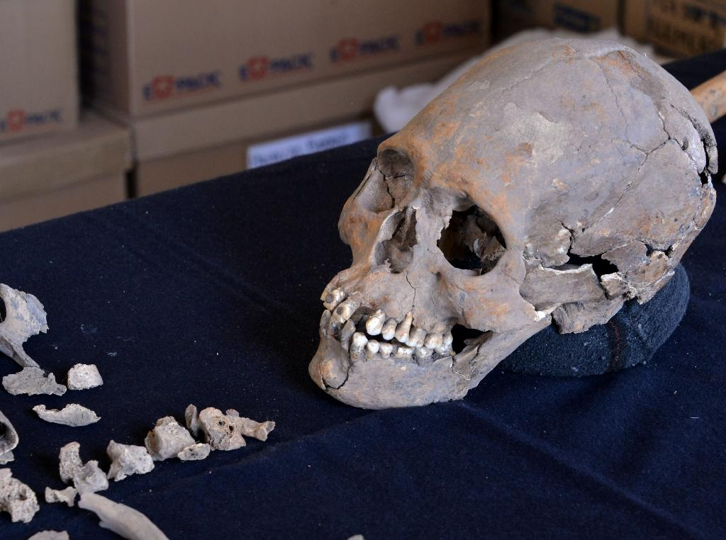 Archeologists who found the 1,600-year-old skeleton near Mexico's ancient Teotihuacan, said the woman was 35-40 when she died with intentionally deformed skull and teeth encrusted with mineral stones (AFP Photo/HO)