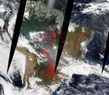 Amazon fires: Bolsonaro actively trying to devastate rainforest, leaked documents show