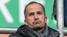 Baum und Schalke - würde das überhaupt passen?