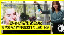 韓政府限制向中國出口 OLED 設備,憂核心技術被盜取!