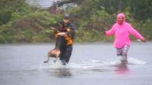Reportera interrumpe su transmisión en vivo para rescatar a un perro en una zona inundada por la tormenta Florence