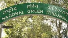 NGT pulls up Jharkhand PCB for environmental damage due to stone crusher in Rajmahal hills