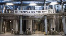 Département du Gard, un vignoble en mutation
