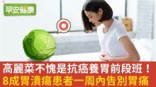在蔬菜中也是營養前段班!養胃護免疫就吃高麗菜