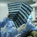 Scientist Calls COVID-19 Lab Origin Theory 'Fabrication'