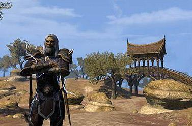 ESO spotlights player-made Thunder Thief build