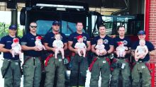 Viral baby pic shows 7 firefighters who became dads within a year: 'Something is in the water'