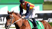 Waller's biggest stars prepare to trial