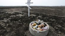 Dutch government to file suit against Russia over downing of MH17