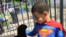 Catman: El superhéroe de 5 añitos que te enamorará