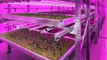 Current, Powered by GE and Stockbridge Technology Centre Partner to Research the Farm of the Future