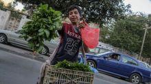 Los altos índices de pobreza disparan el trabajo infantil en Gaza