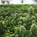 Illinois marijuana legalization bill to be signed by Gov. JB Pritzker Tuesday morning