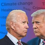 Where Donald Trump and Joe Biden stand on healthcare, taxes, abortion, and other key issues