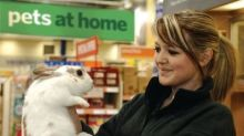 Pets at Home may boost stockpiles by £8m in case of hard Brexit