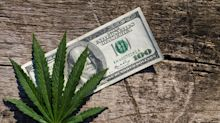 The 3 Most Profitable Marijuana Stocks You Can Buy Right Now