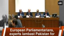 European Parliamentarians, experts lambast Pakistan for sheltering terrorists