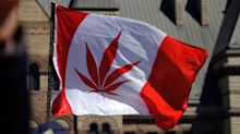 Marijuana legalization gives 420 and cannabis culture a different meaning