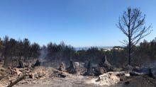 Incendies de Martigues : l'unité de pompiers mobilisée ne relâche pas sa surveillance