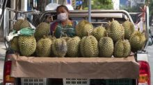 Smelly durian fruit forces evacuation of Bavarian post office
