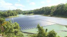 300企業用全台35.2%的電 洪申翰、陳椒樺呼籲用電大戶裝綠電