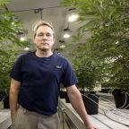 Canopy Growth earnings: Can the world's largest marijuana company keep growing like a weed?