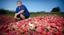 Rede de supermercados australiana para de vender agulhas após escândalo com morangos