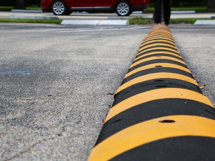 speed Humps be placed on Dume Drive and Fernhill Drive between Grayfox Street and Cliffside Drive.