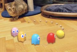 Google Search turns Pac-Man and Hello Kitty into interactive AR objects