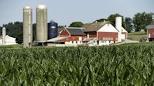 U.S. Farmers See the Light