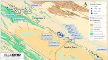 BlueBird Commences Exploration at the Ashburton Cobalt Project, Western Australia